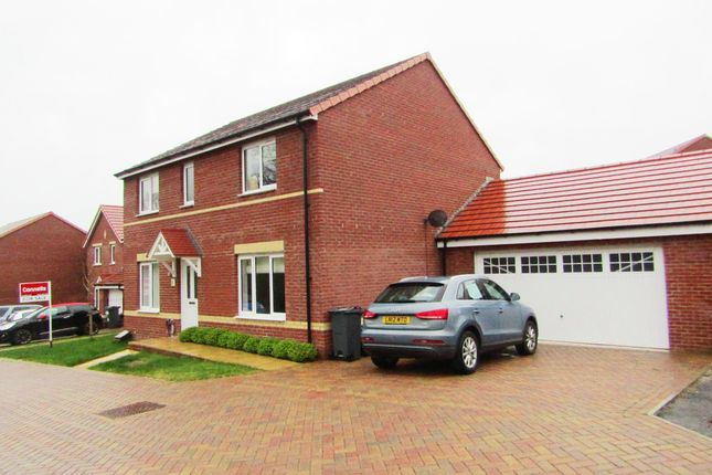 Thumbnail Property to rent in Nettle Close, Newton Abbot