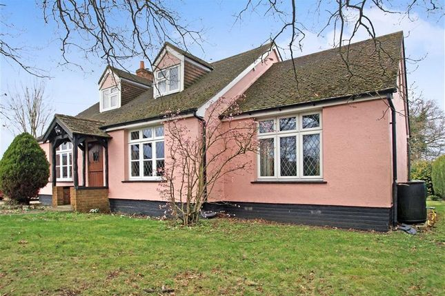Thumbnail Detached house for sale in Newney Green, Chelmsford, Essex