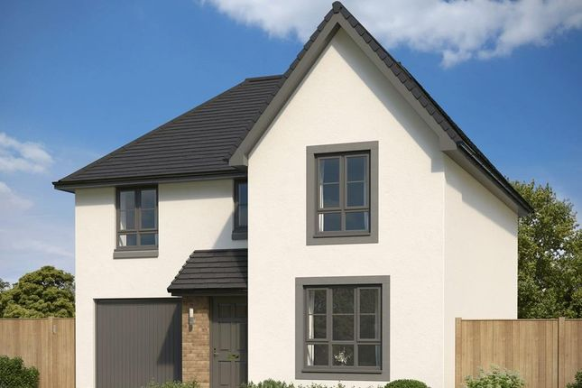 "Thumbnail Detached house for sale in ""Dunbar"" at Countesswells Park Road, Countesswells, Aberdeen"