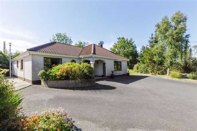 Thumbnail Detached house for sale in Dromore Road, Ballynahinch, Down