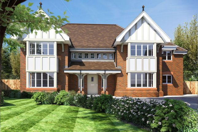 Thumbnail Detached house for sale in Winchfield View, Old Potbridge Road, Winchfield