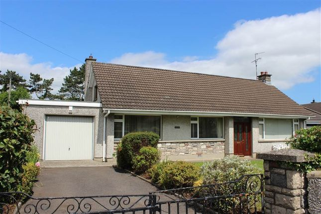 Thumbnail Bungalow for sale in Loretto Park, Dublin Road, Newry