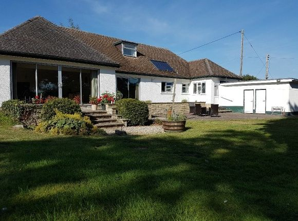 Thumbnail Detached bungalow to rent in Roman Road, Holmer, Hereford