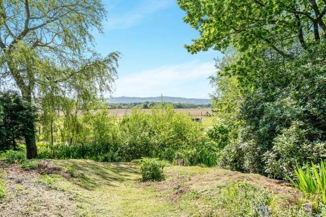 Views of Minsted, Midhurst, West Sussex, . GU29