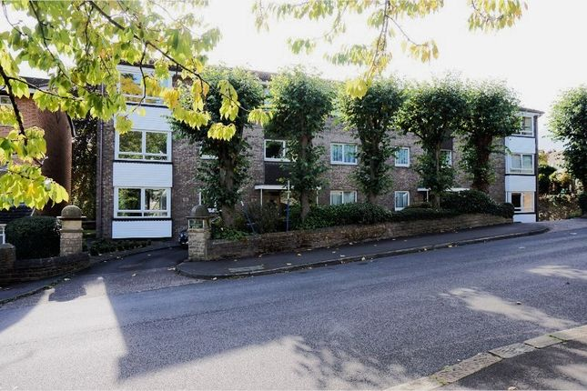 Thumbnail Flat for sale in 203 Graham Road, Sheffield