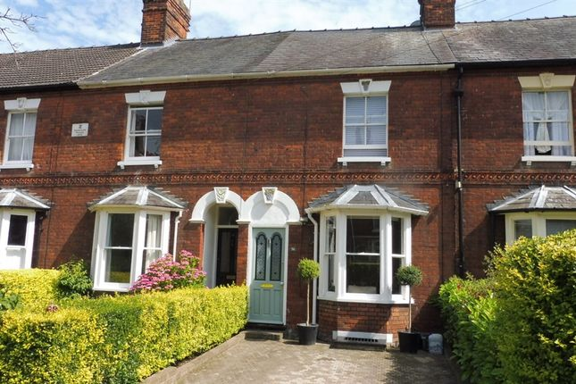 Thumbnail Terraced house for sale in Springfield Road, Bury St. Edmunds