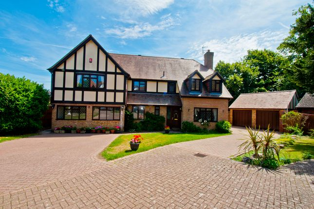 Thumbnail Detached house for sale in Veryan, Fareham