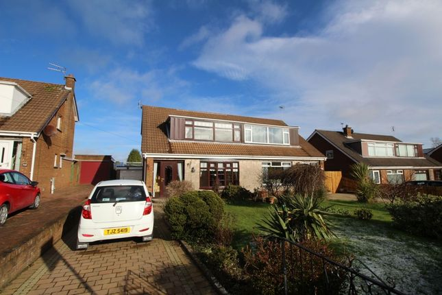 Thumbnail Semi-detached house to rent in Killeen Avenue, Bangor