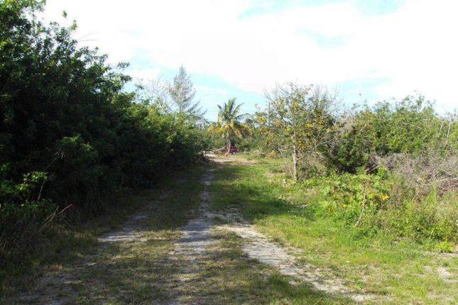 Land for sale in Fire Trail Road, Nassau/New Providence, The Bahamas