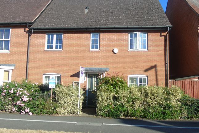 Thumbnail Semi-detached house to rent in Dragon Road, Hatfield