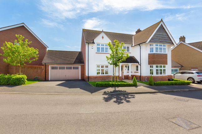 Thumbnail Detached house for sale in Ivy Lane, Royston