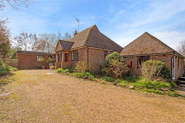 Thumbnail Detached bungalow for sale in Highfield Lane, Thursley, Godalming, Surrey