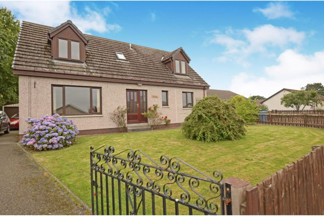 Thumbnail Detached house for sale in Springfield Terrace, Alness