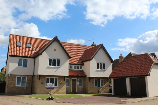 Thumbnail Detached house for sale in Haddon Mead, South Woodham Ferrers