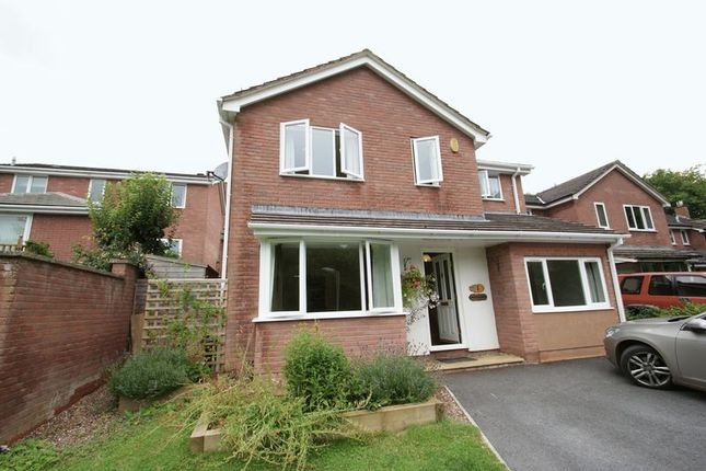 Thumbnail Detached house to rent in Great Hill View, Exeter