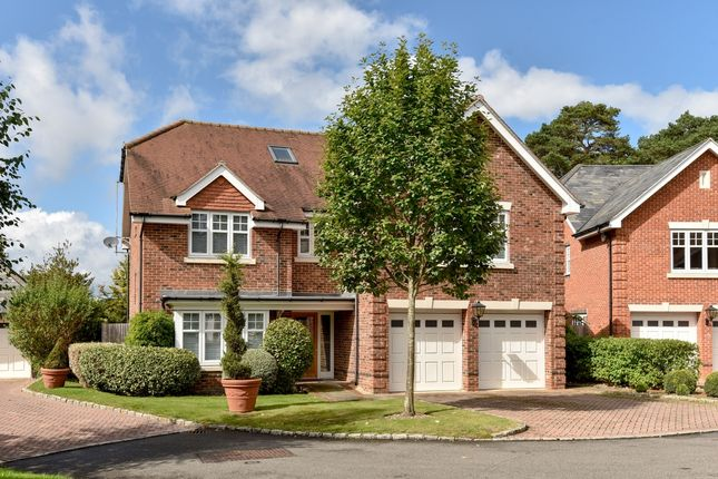 Thumbnail Flat to rent in Chapel Pines, Camberley