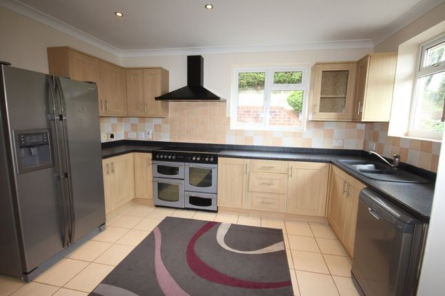 Thumbnail Semi-detached house to rent in Clifton Road, Paignton