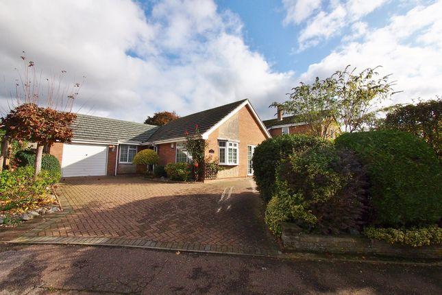 2 bed detached bungalow to rent in Applegarth, Wymondham NR18