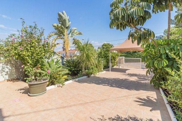 Terrace1 of Spain, Alicante, Torrevieja, Los Balcones