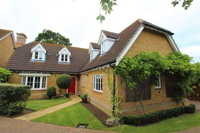Thumbnail Detached house for sale in Etheldore Avenue, Hockley