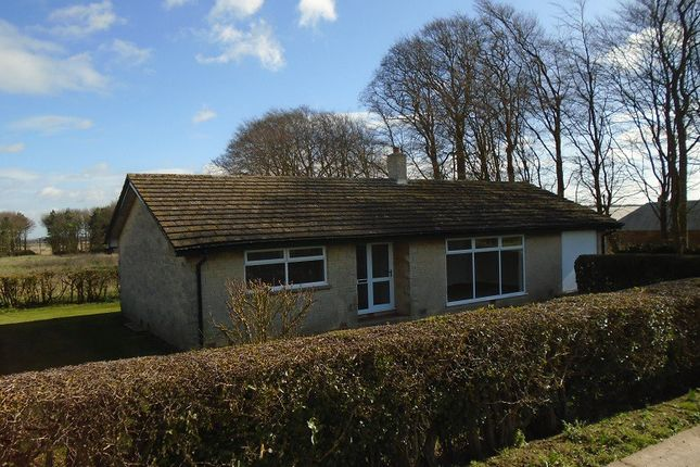 Thumbnail Bungalow to rent in Rothwell, Rothwell, Market Rasen
