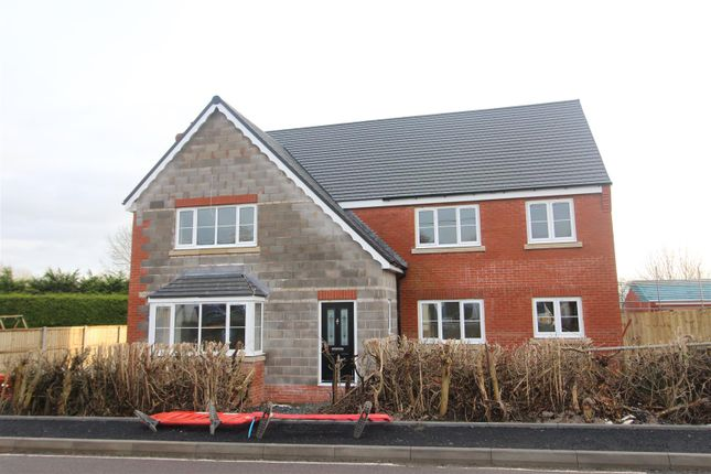 Thumbnail Detached house for sale in Ivory House, Willowbank Meadows, Hengoed, Oswestry