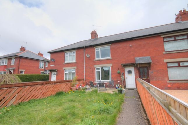 Thumbnail Terraced house to rent in Willard Grove, Stanhope, Bishop Auckland