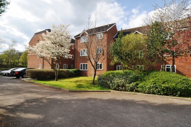 Studio to rent in Haysman Close, Letchworth Garden City SG6