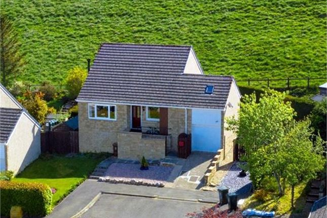 Thumbnail Detached bungalow for sale in Wentworth Park, Allendale