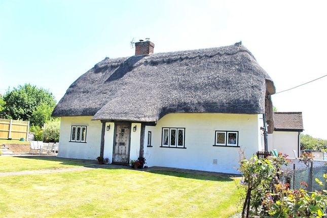 Thumbnail Cottage for sale in Aythorpe Roding, Dunmow, Essex