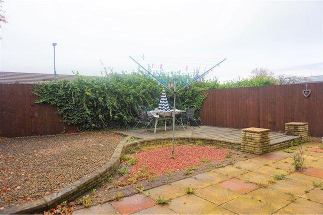 Rear Garden of St. Simon Street, South Shields NE34