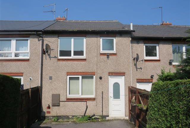 Thumbnail Property to rent in Leonard Close, Sheffield