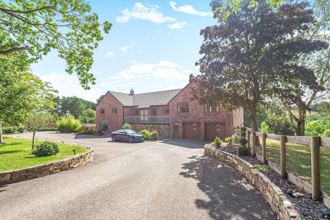 Thumbnail Detached house for sale in Cheynegate Lane, Exeter