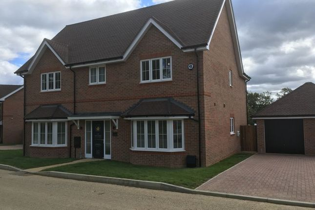 Thumbnail Detached house for sale in The Ewhurst, Amlets Place, Cranleigh