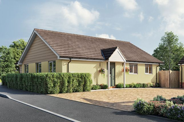 """Thumbnail Bungalow for sale in """"The Gala"""" at Aller Mead Way, Williton, Taunton"""