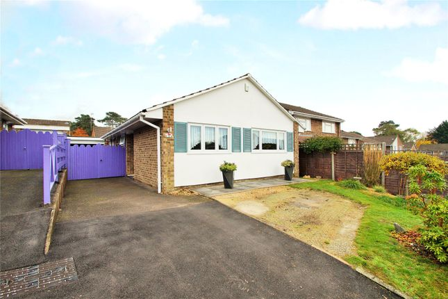 Thumbnail Detached bungalow for sale in Birkbeck Place, Owlsmoor, Sandhurst, Berkshire