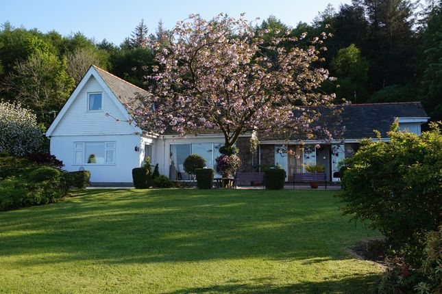 Thumbnail Detached house for sale in Wern Y Wylan, Beaumaris