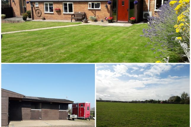 Thumbnail Detached bungalow for sale in Melton Road Hickling Pastures, Mowbray