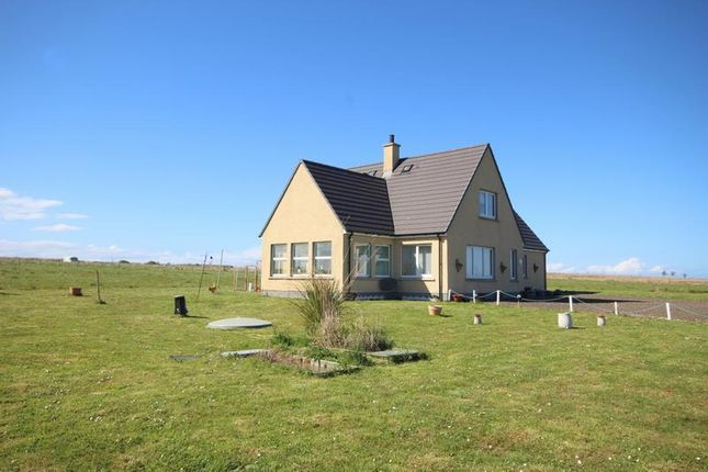 Thumbnail Property for sale in Auckengill, Wick