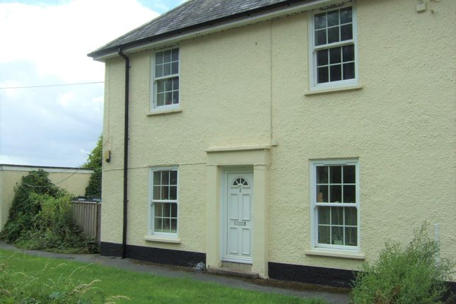 Thumbnail Cottage to rent in Musbury, Axminster, Devon