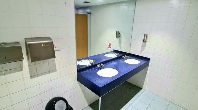 Toilet Pic1 of Langholm, Newlands Road, East Kilbride, Glasgow G75