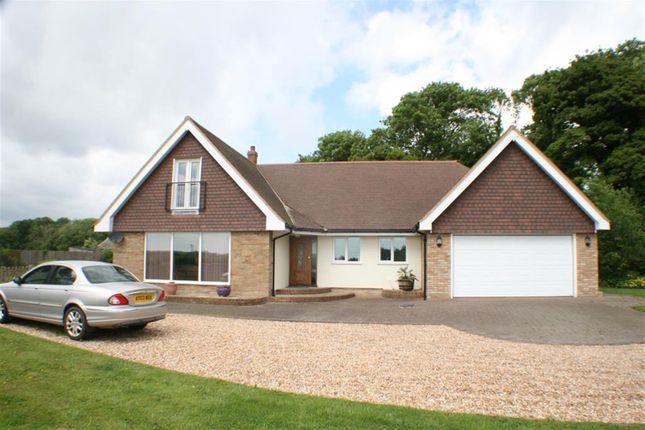 Thumbnail Detached house for sale in Newington, Folkestone, Kent