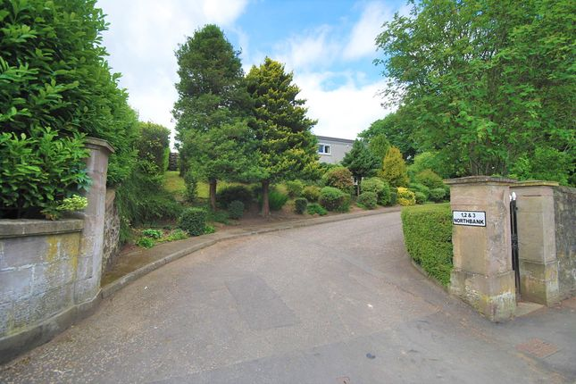 Thumbnail Detached house for sale in Craigie Place, Perth