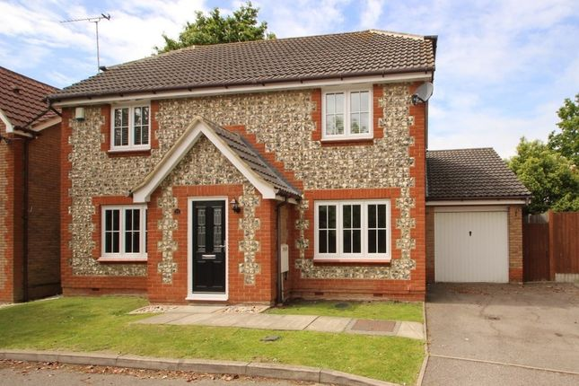 Thumbnail Detached house for sale in Tamarisk, Benfleet