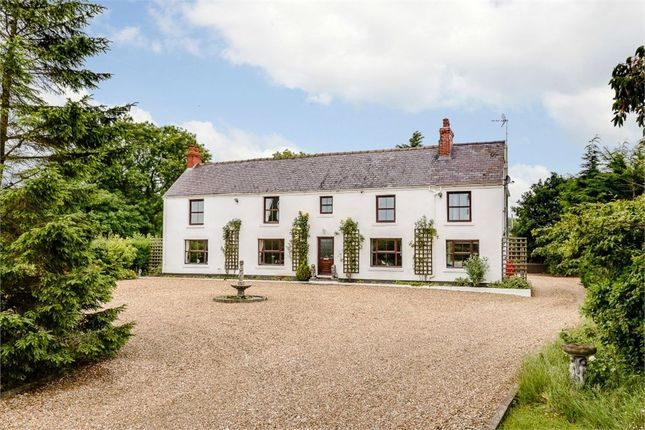 Thumbnail Detached house for sale in Well Street, Buckley, Flintshire