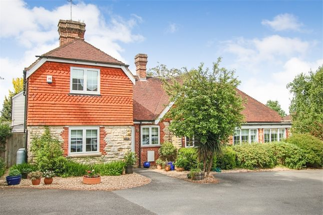 Thumbnail Detached house for sale in The Lodge, Lewes Road, Forest Row, East Sussex