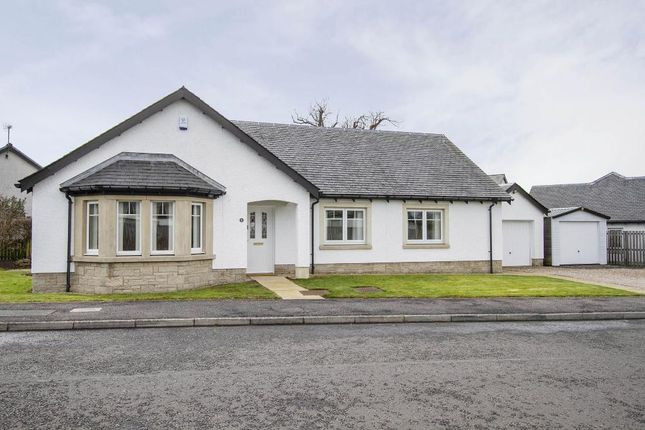 Thumbnail Detached bungalow for sale in Waukmill Drive, Blackford, Perth, Scotland