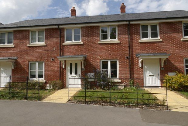 Thumbnail Terraced house to rent in Cutforth Way, Romsey
