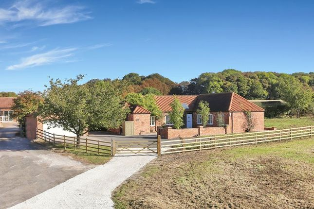 Thumbnail Barn conversion for sale in Lime Lane, Arnold, Nottingham