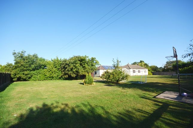 Thumbnail Detached bungalow for sale in Braintree Green, Rayne, Braintree